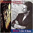 David Frizzell: 'My Life Is Just A Bridge' (BFE Records, 1993)